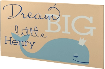 Dream Big Canvas Prints