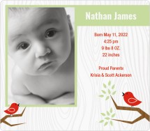 Sweet Song Birds Birth Announcement Magnets