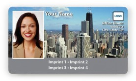 Chicago-Day, boxed photo Magnetic Business Cards