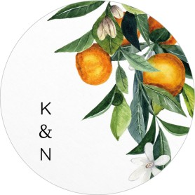 Mod Citrus Wedding Coasters