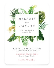 Beach Palms Rounded Invitations