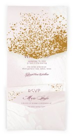 Tender Mist Pocket Invitations