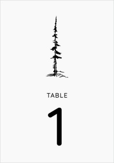 Mountain Romance Wedding Table Numbers