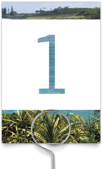 Tropical Paradise Wedding Table Numbers